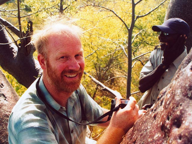 Jim Bond, ethnobotanist and baobab expert, up a tall baobab tree in Namibia