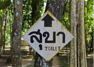 Campsite toilet sign, Thailand: Travellers' diarrhoea can ruin a holiday or business trip